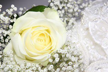 Wedding and Video Packages